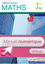 Perspectives Maths 1re Bac Pro Industriel - Manuel numérique - Licence élève enrichie - Ed.2010